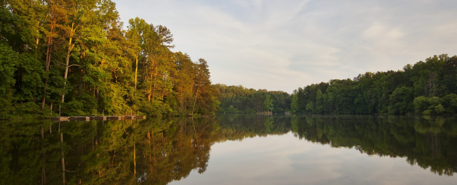 view of the newnans lake