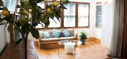 Island Grove Sun Room couch